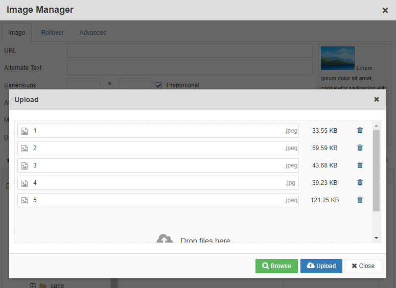 image manager upload